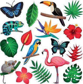 Tropical Exotic Icon Set
