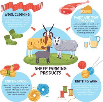 Sheep Breeding Infographics