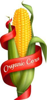 Realistic Corn With Ribbon