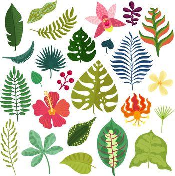 Tropical Plants Elements Set