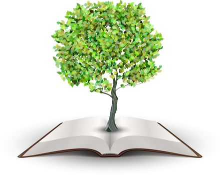 Tree on open book