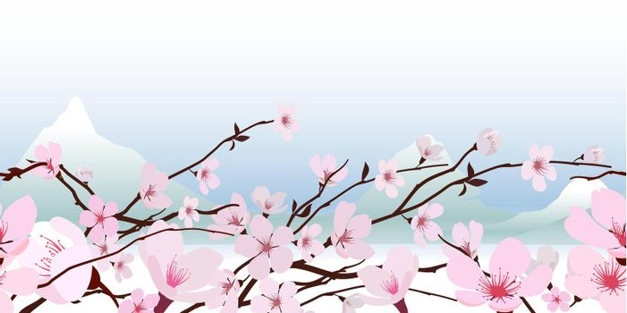 Delicate pink spring blossom