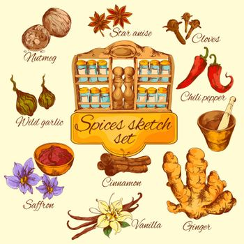 Spices Sketch Colored