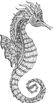 Doodle sketch seahorse black line