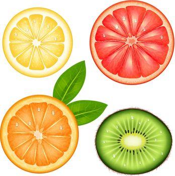 Fruits Top Set