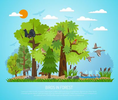 Poster Of Birds In Forest