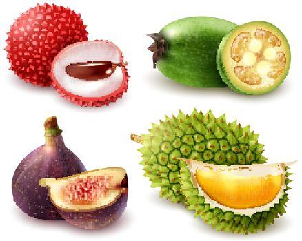 Realistic Exotic Fruits Set