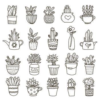 Domestic Plants Icon Set