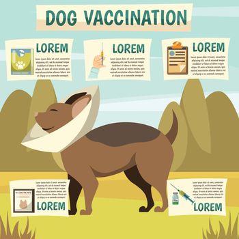 Dog Vaccination Orthogonal Background Poster