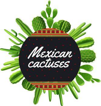 Mexican Cactus Illustration
