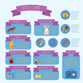 Dog care infographic banner layout