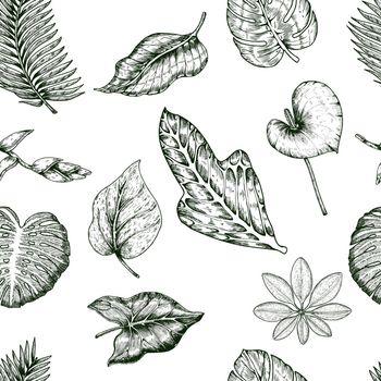Tropical Plants Seamless Pattern