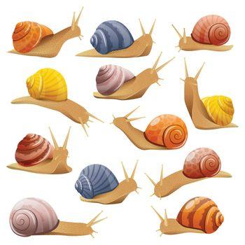 Decorative Snails Set