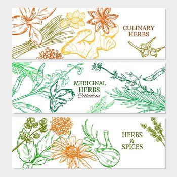 Natural Healthy Plants Horizontal Banners