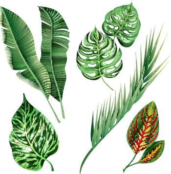Realistic Tropical Botanical Foliage Plants Set