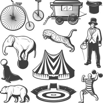 Vintage Circus Elements Collection
