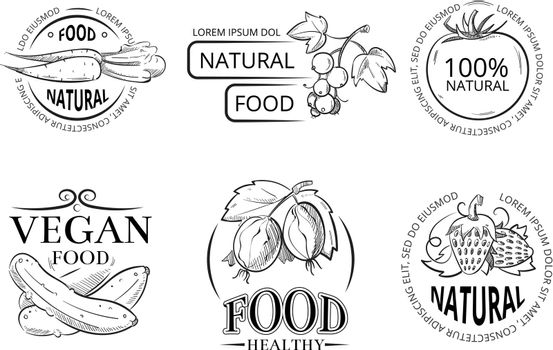 Veggie hand drawing labels and emblems with doodle vegan meal