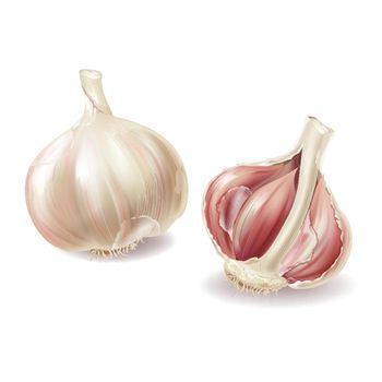 Vector 3d realistic garlic set, spicy condiment