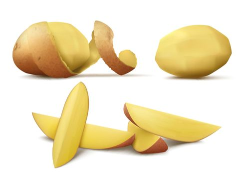Vector clipart with raw peeled potato and slices