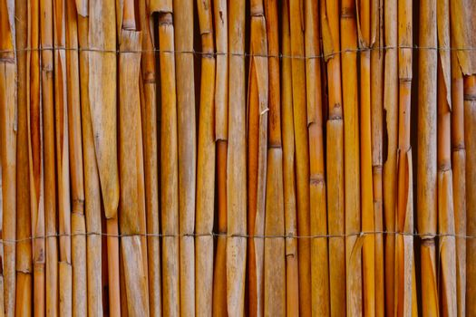 Close-up on a bamboo fence in the park. Background, texture.