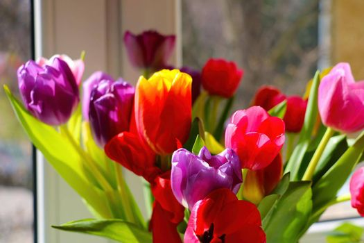 There is a bouquet of fragrant blooming tulips in a vase on the windowsill.