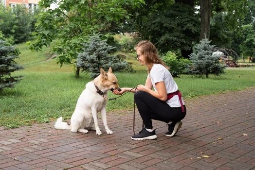 young woman training her dog in a park
