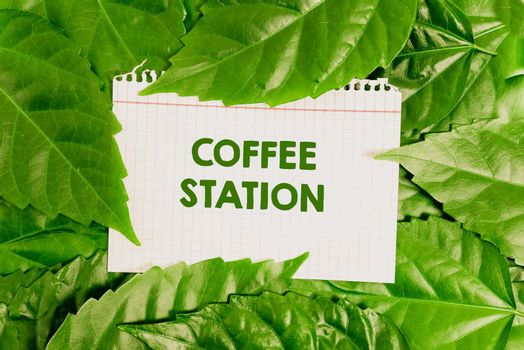 Inspiration showing sign Coffee Station. Business showcase a small, informal restaurant that typically serves hot drinks Nature Conservation Ideas, New Environmental Preservation Plans