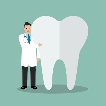 Dentist presenting the tooth