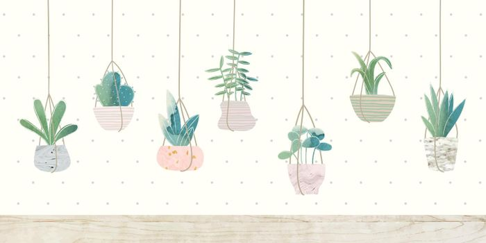 Botany hanging cactus collection vector