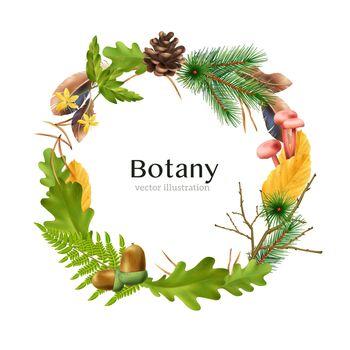 Wreath Botanical Frame Composition