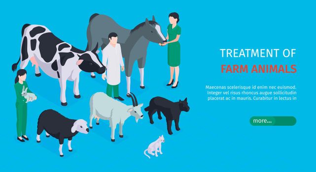 Veterinary Horizontal Banner