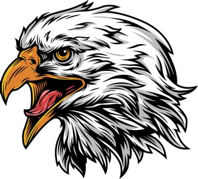 Vintage eagle head mascot colorful concept