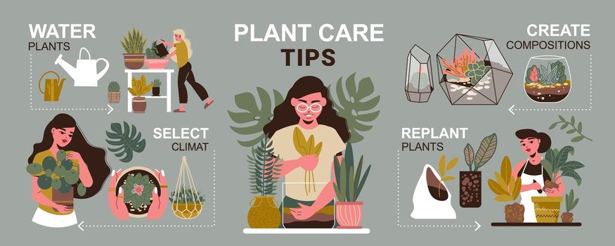 Care For Plants Infographics