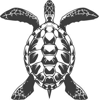 Vintage turtle top view concept