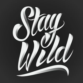Stay wild lettering