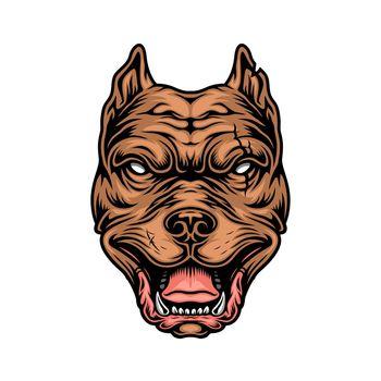 Vintage colorful cruel pitbull head