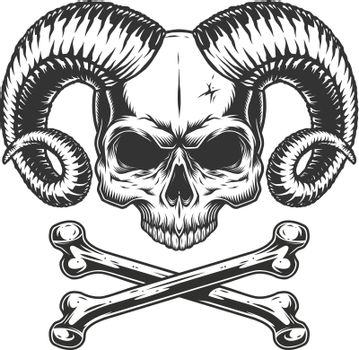 Devil skull without jaw