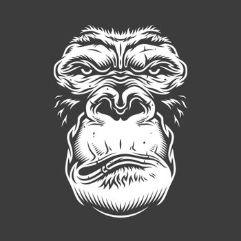 Face of gorilla isolated on white