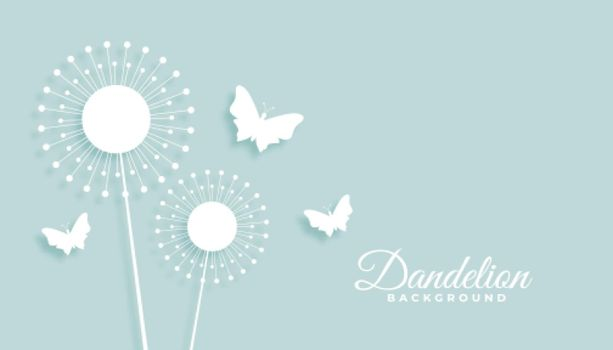 dandelion flower with butterfly background