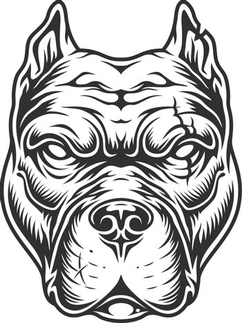 Pitbull head in black and white color style