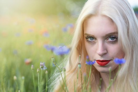 Portrait of beautiful  young woman posing in cornflower meadow