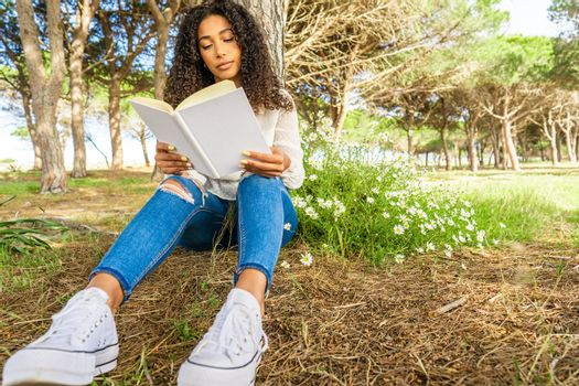 Low front view of an Afro-American curly brunette in blue jeans and white sneakers sitting under a tree in a pine forest near the sea reading a book beside a daisy bush having fun with love tales